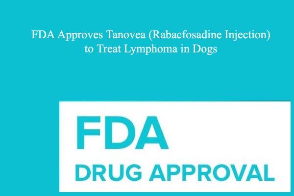FDA Approves Tanovea (Rabacfosadine Injection) to Treat Lymphoma in Dogs